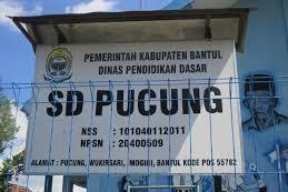 Profil Perpustakaan Sekolah SD N PUCUNG, Desa Wukirsari, Bantul Yogyakarta