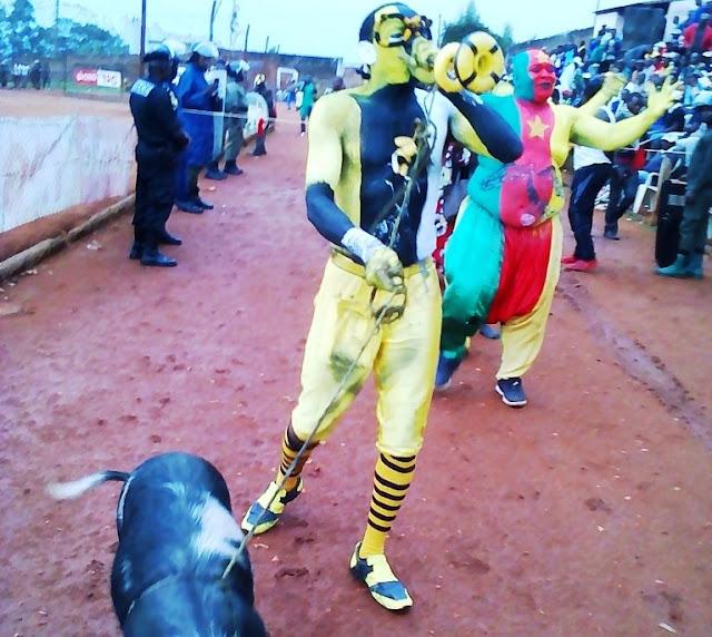 Aigle de Dschang Cameroun