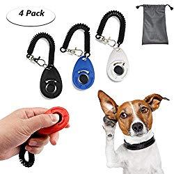 Hundespielzeug Clickertraining