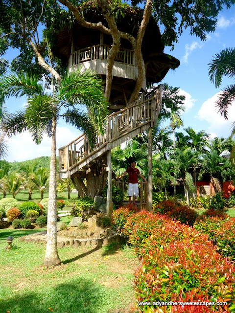 tree house at Rafael's Farm Leyte