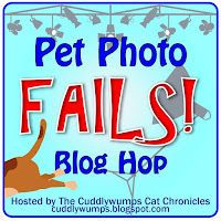 Pet Photo Fails Blog Hop