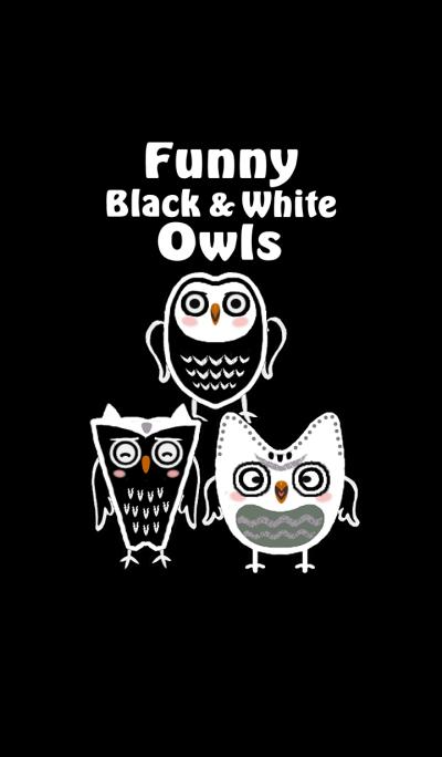 Funny black & white owls
