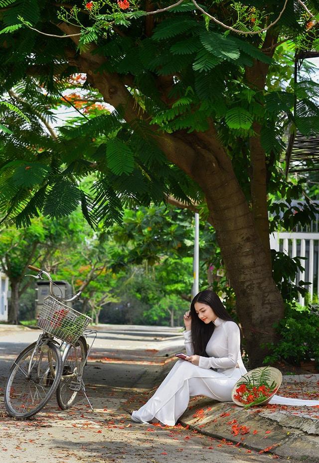 Quỳnh Trâm thướt tha trong tà áo trắng nữ sinh khi mùa phượng vĩ về -11