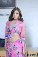 Angela Krislinzki Rogue Movie Fame Telugu Actress in Saree Backless Choli 063.JPG