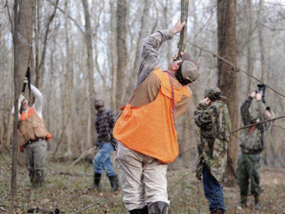 Squirrel hunters shoot guns up into trees