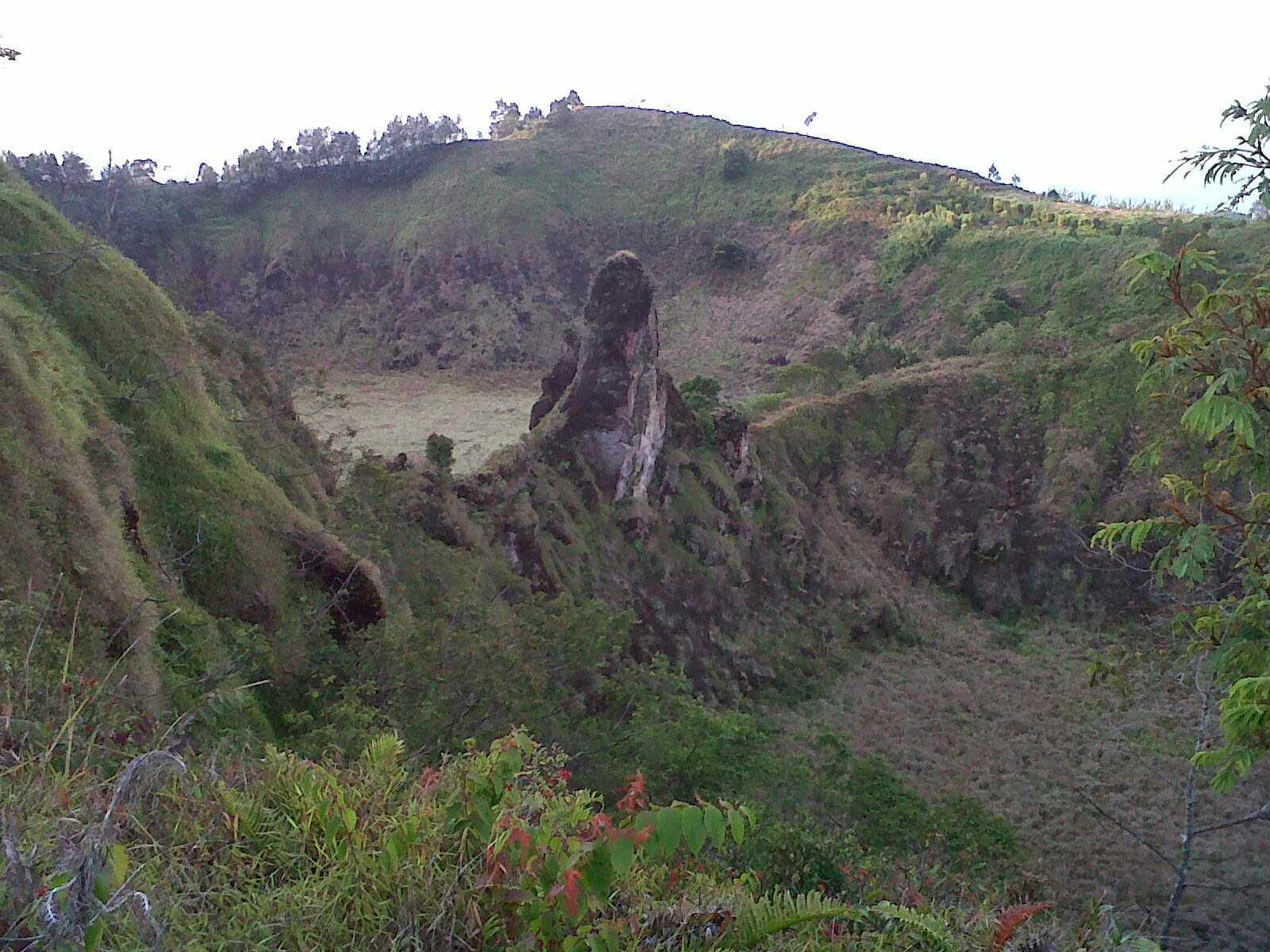 http://cityhyangdiengtour.blogspot.com/2014/09/pendakian-gunung-pakuwojo.html
