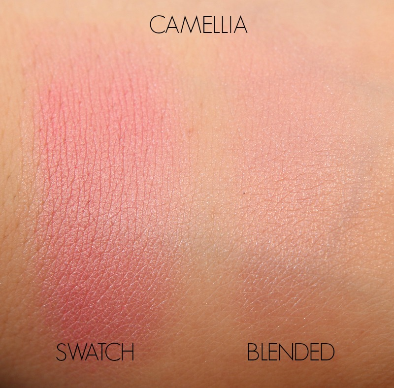 Camellia- BECCA Shimmering Skin Perfector Luminous Blushes