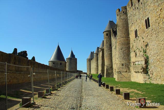 Liza entre murallas de Carcassonne