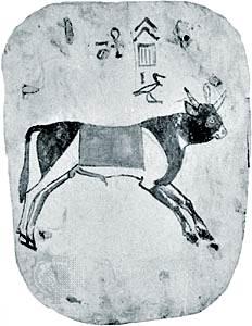 Apis, la antigua deidad del toro egipcio, pintada en el fondo de un ataúd de madera, c. 700 aC