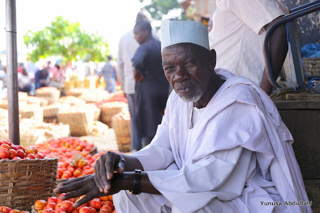 HURRAY!!! Tomato price crashes from N25,000 to N800 per basket