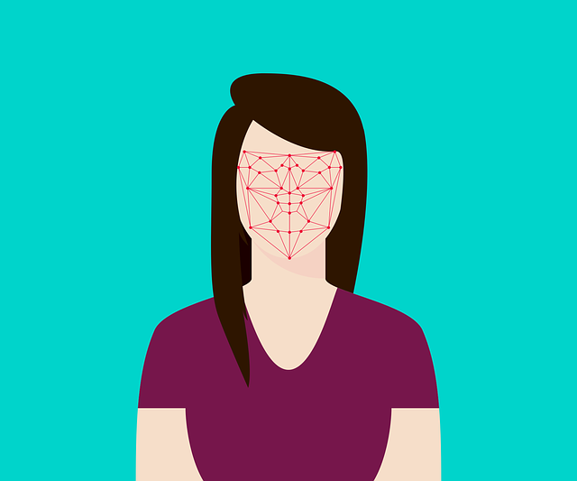 How Does Facial Recognition System Work