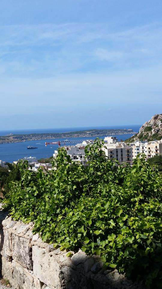 mehilla bay malta travel guide