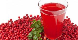 Manfaat Buah Cranberry Untuk Kesehatan Tubuh
