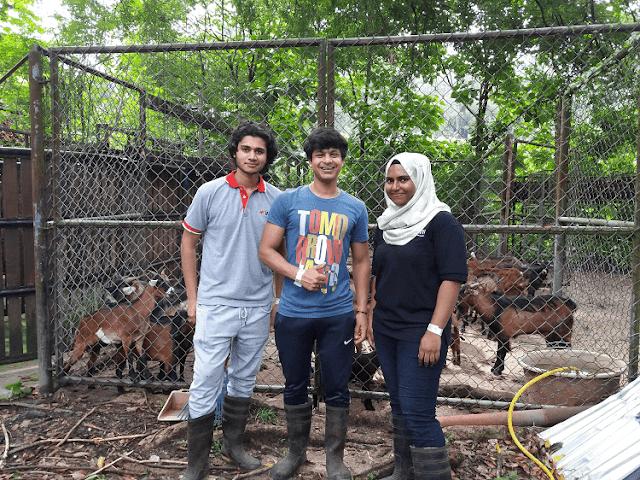 Muhammad Saad, Sukarelawan INTI Serlah Bakat Menjinakkan Haiwan,