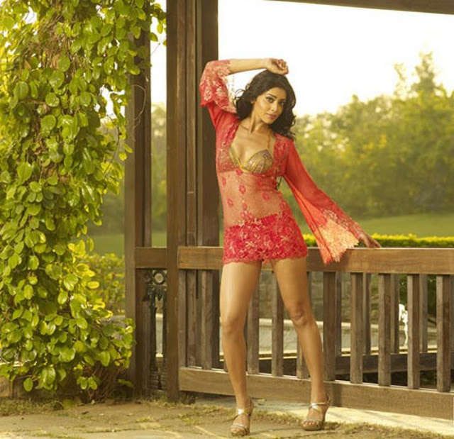 Sexy -Heroin -Shriya-Hot-Photoshoot