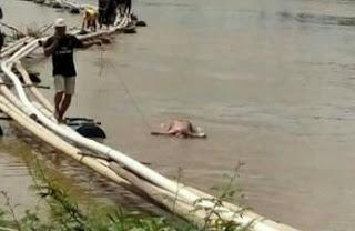Warga Sungai Pinang Temukan Mayat Mengapung