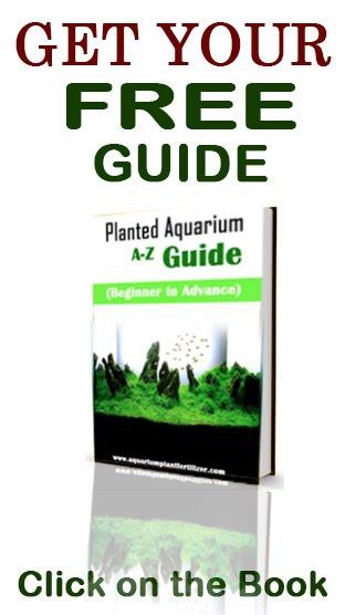 aquarium plant fertilizer finnex planted 24 7 fully automated