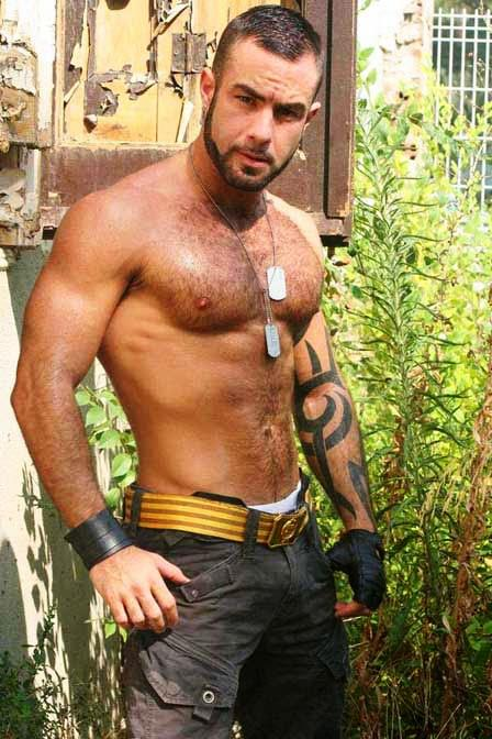Gay Muscular 83
