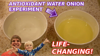 Antioxidant Water Onion Experiement - Timothy McGaffin II