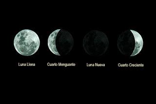 Fases de la luna, , Luna nueva, Cuarto creciente, Luna llena, Cuarto menguante, Luna llena de Nieve, la Luna gibosa creciente o la Luna negra