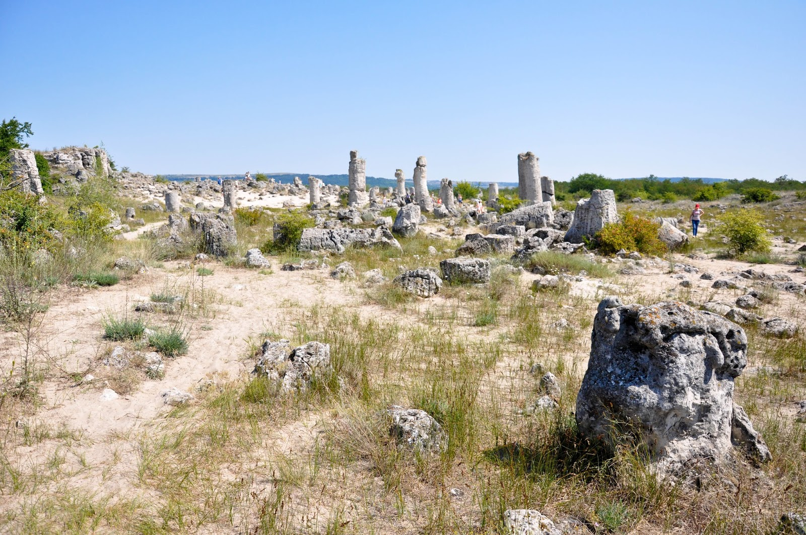 A general view, The Stone Forest, Varna, Bulgaria