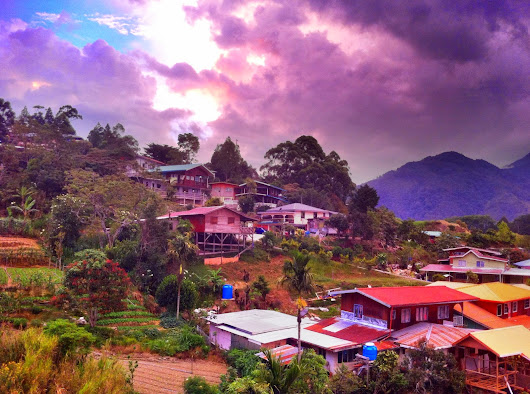 Climbing Mt Kinabalu: View of a farming village at Kundasang