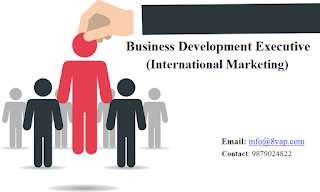 Business Development Executive (International Marketing)
