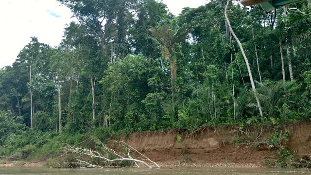 riverbank Tombopato