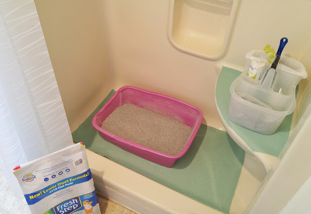 clean and fresh litter box area #yougottabekittenme #CBias #ad