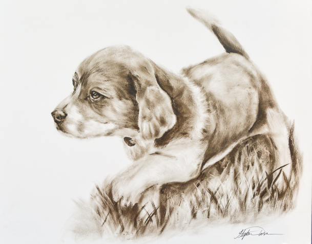 Dry Brush Oil Painting of Beagle Bailey