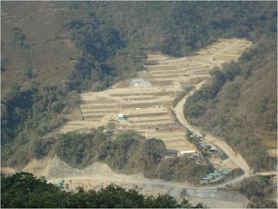 Un campamento que destruyo cientos de árboles