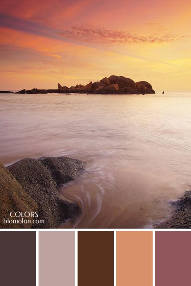 paletas_de_colores_21_variedad_de_color_6