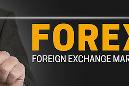 Locating a Forex Broker Online – Find the Best Broker for Your Situation