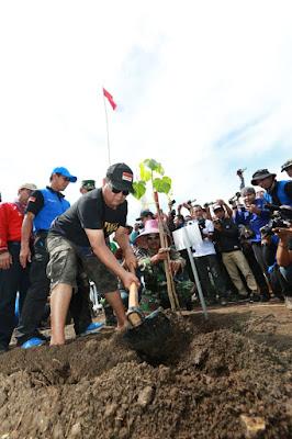 Revolusi Hijau, Gilaran DAS Ditanami Pohon