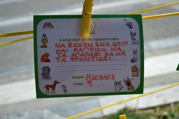 Λάρισα: Εκδήλωση ενημέρωσης των παιδιών για την προστασία των αδέσποτων και δεσποζόμενων ζώων