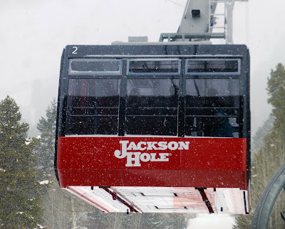 Jackson Hole, WY, January 2018.  The Saratoga Skier and Hiker, first-hand accounts of adventures in the Adirondacks and beyond, and Gore Mountain ski blog.