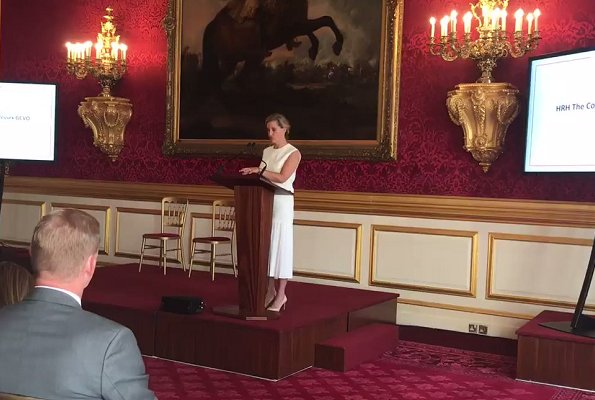 The Countess of Wessex hosted the Vodafone Foundation's DigitisingPurpose forum at St James's Palace