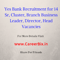 Yes Bank Recruitment for 14 Sr, Cluster, Branch Business Leader, Director, Head Vacancies