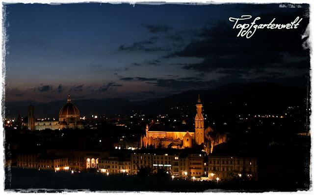 Blick auf Florenz bei Nacht