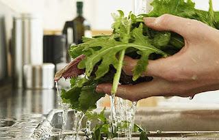 Lavar bien los alimentos antes de ingerir, previene enfermedades