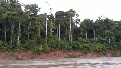 the riverbank of the Tombopato