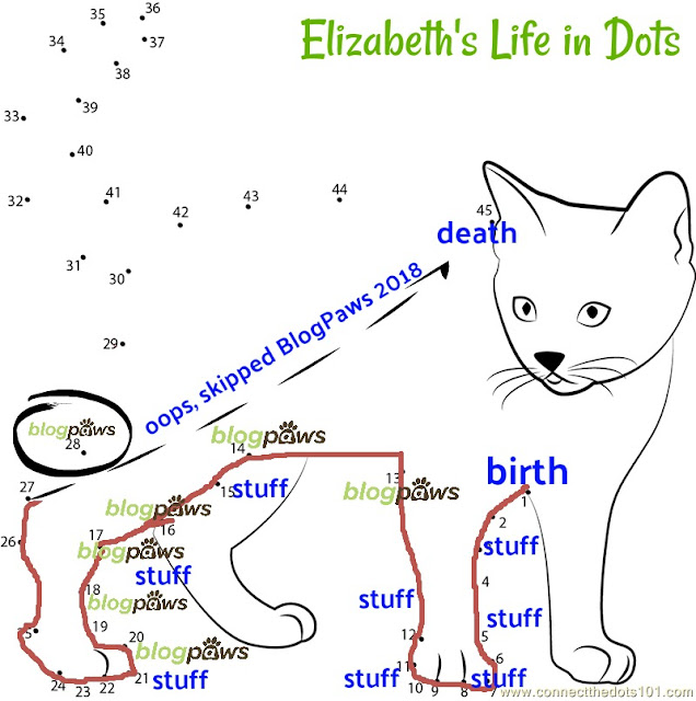 dot to dot diagram of a cat with labels