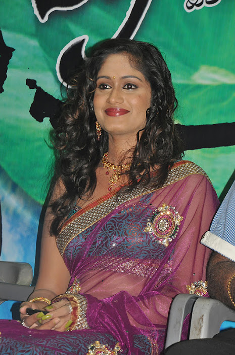 lavanya spicy transparent saree glamour  images