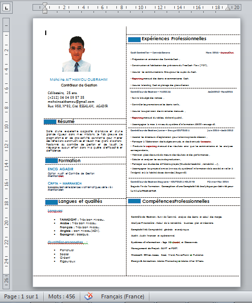 meilleur cv 2017 - version word