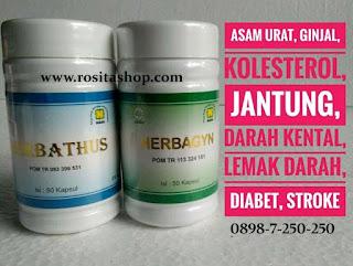 obat herbal asam urat kolesterol