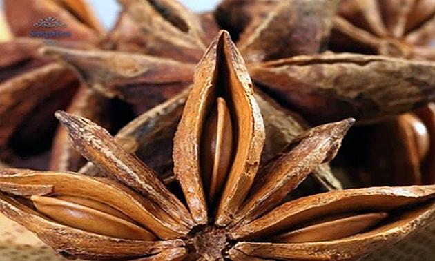 Anis estrelado (Illicium verum Hook. f.)