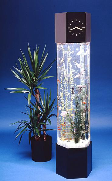 15 Creative Fish Bowls and Cool Aquarium Designs - Part 2.