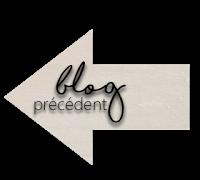 blog précédent