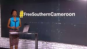 International protests increasing in solidarity with Southern Cameroon