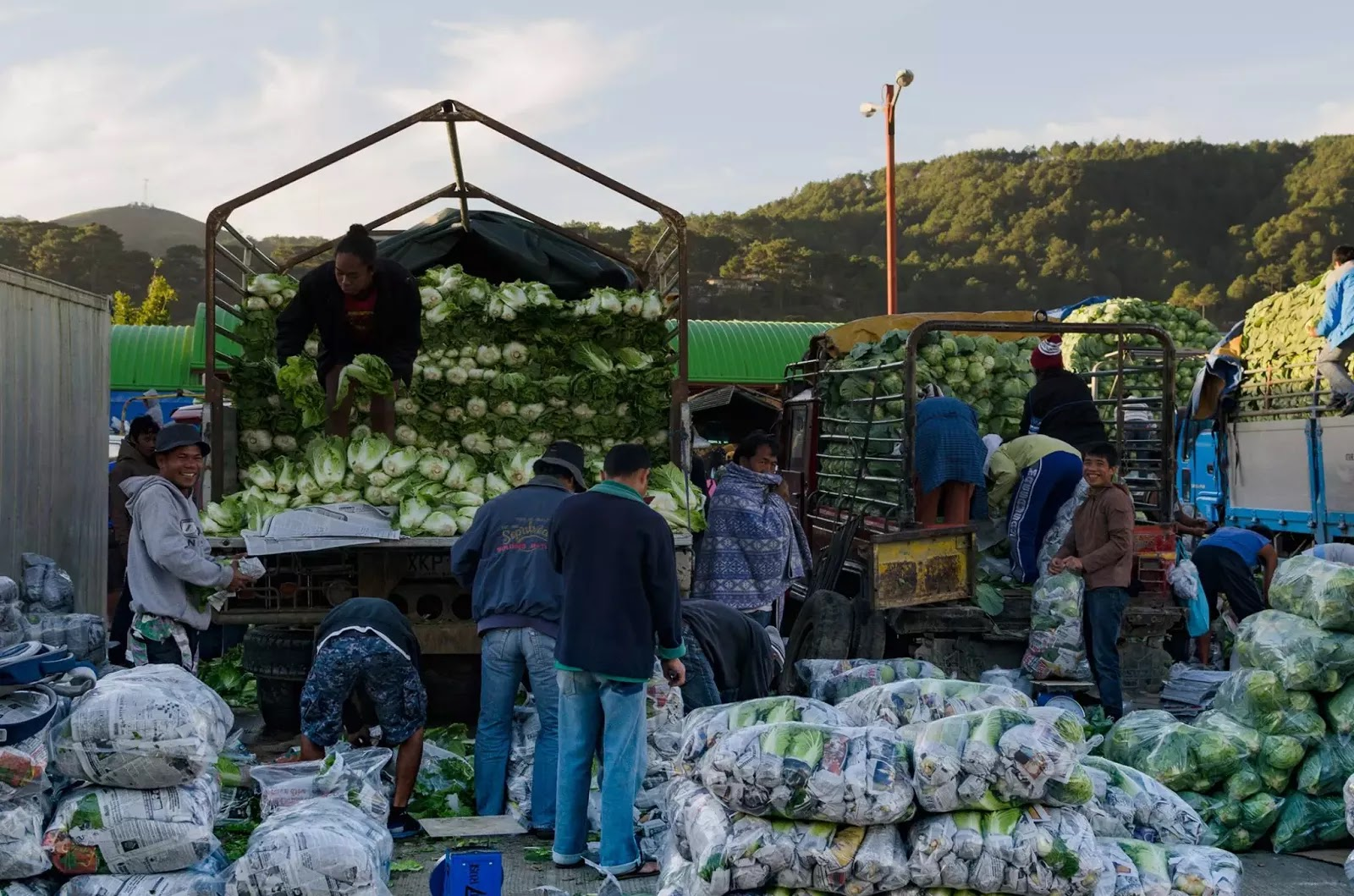 Vegetable Produce Workers Benguet Trading Post La Trinidad Benguet Cordillera Administrative Region Philippines